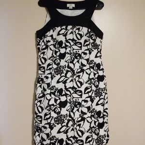 Ann Taylor Loft Dress Sleeveless 10 Summer Casual